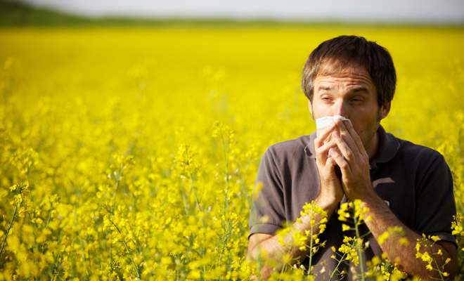 Seasonal allergies, sinus congestion, lymphatic congestion, chronic sinus problems, post nasal drip, enzymes